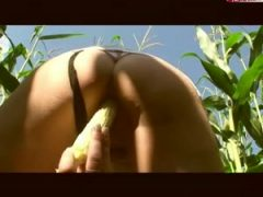 Arschprinzessin An ass in the corn field